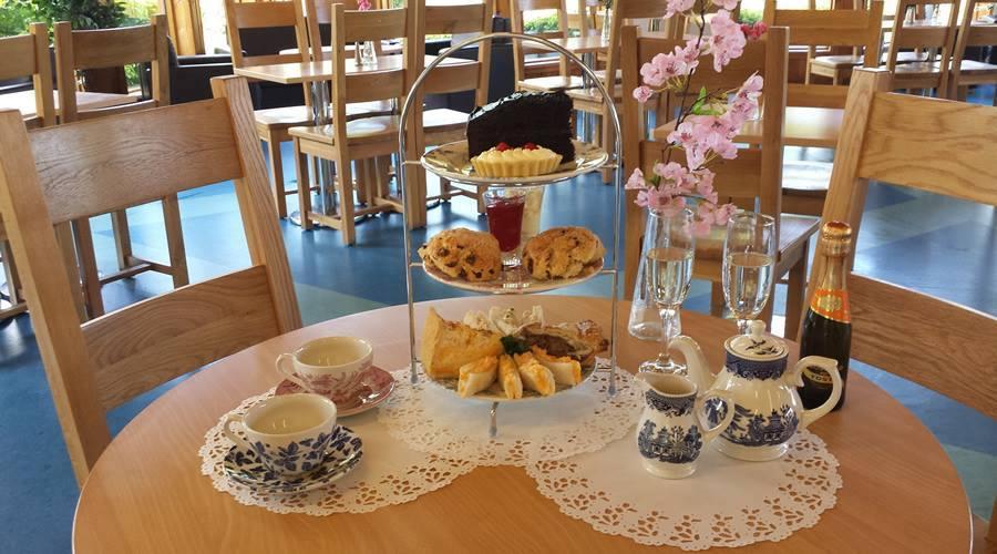 Afternoon Tea Newcastle - Azure Garden centre