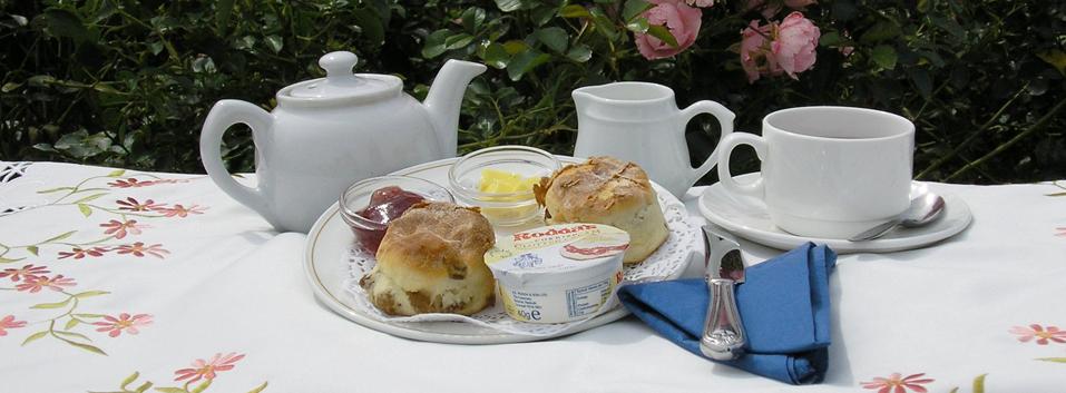 Afternoon Tea Tunbridge Wells - Penshurst Place