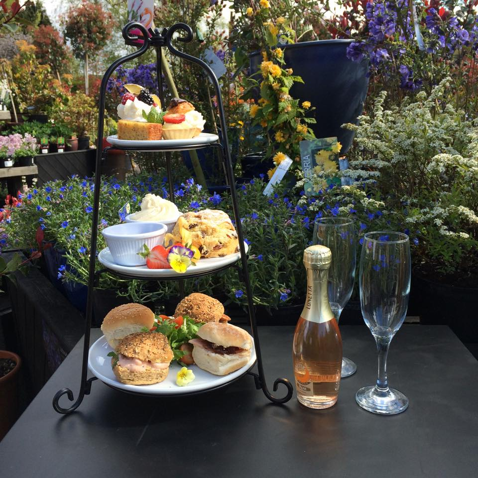 Afternoon Tea Wirral - Sun Lounge at Port Sunlight Garden Centre